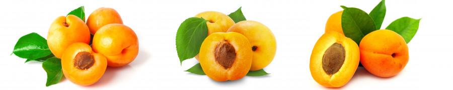 fruit-166