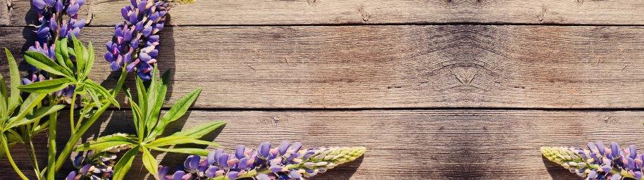 flowering-trees-067