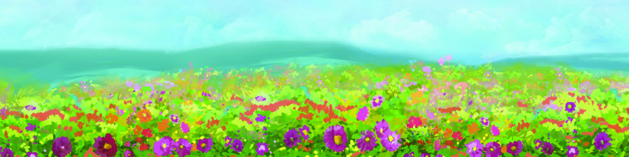 wildflowers-041