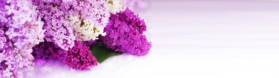 flowering-trees-040