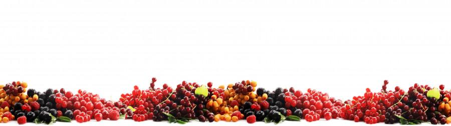 fruit-146