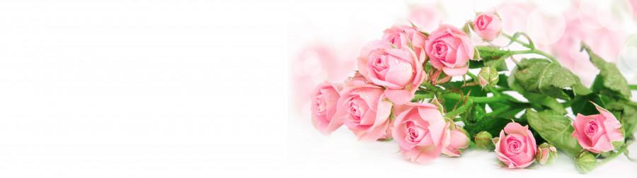 roses-031