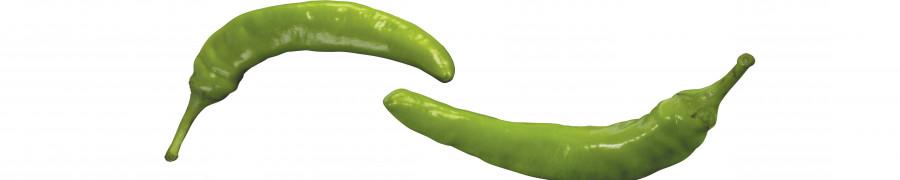vegetables-095