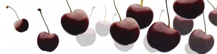 fruit-109