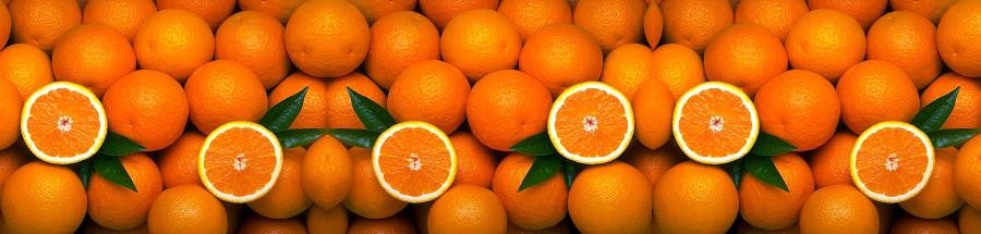 fruit-026