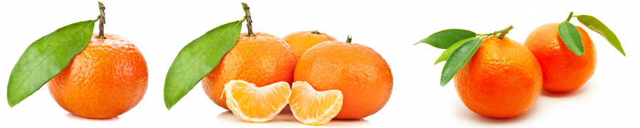 fruit-057