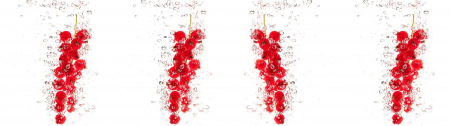 fruit-water-102