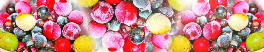fruit-047