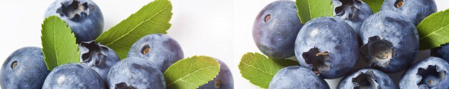 fruit-068