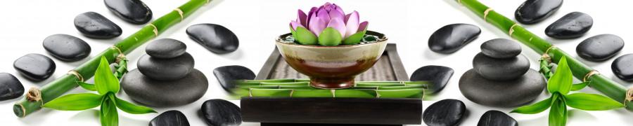 bamboo-plants-041