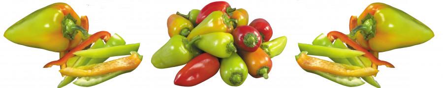 vegetables-094