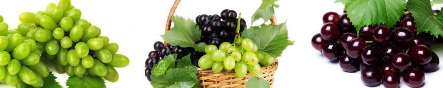 fruit-037