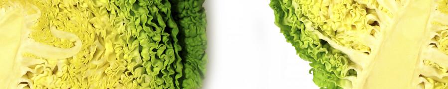 vegetables-049