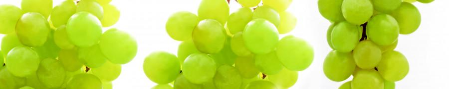 fruit-153