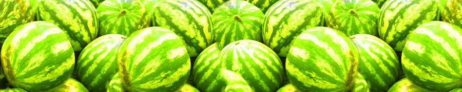 fruit-209