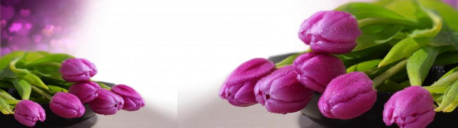 tulips-032