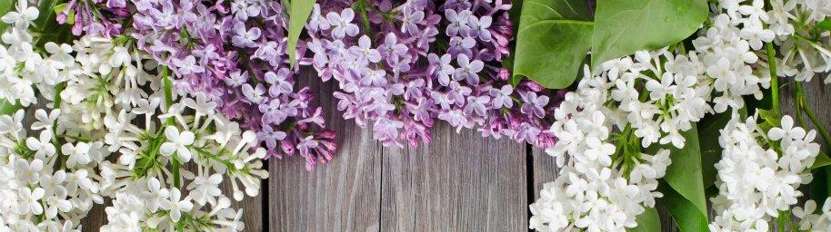 flowering-trees-070