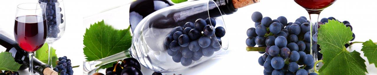 wine-067