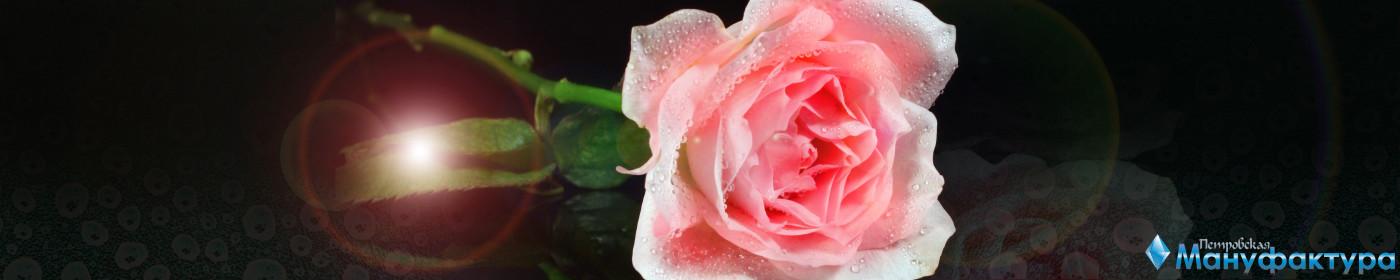 roses-018