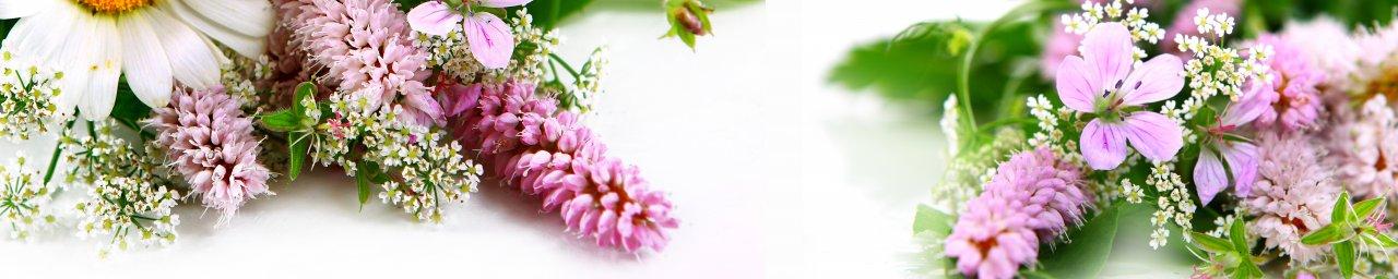 wildflowers-017