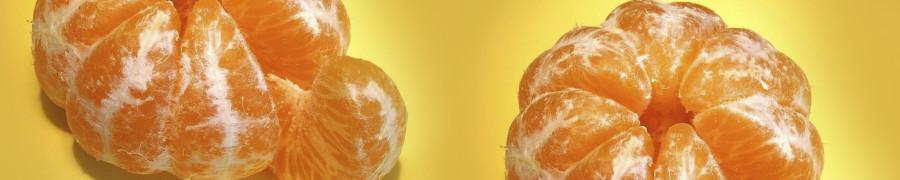 fruit-046