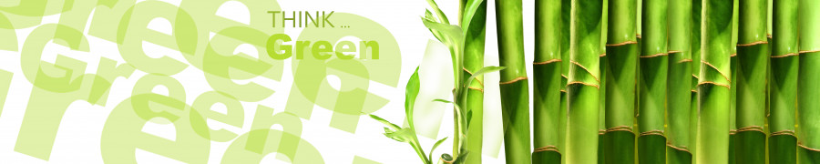 bamboo-plants-156