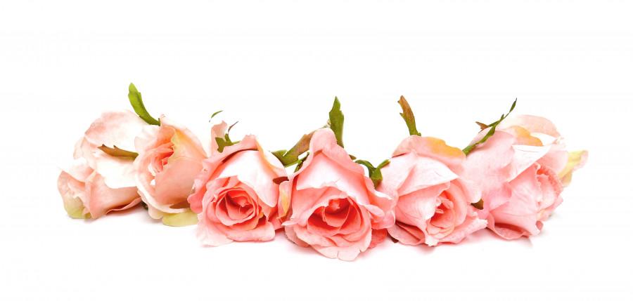 roses-006