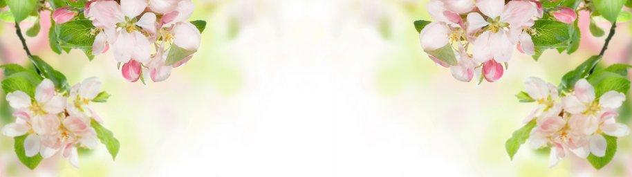 flowering-trees-008