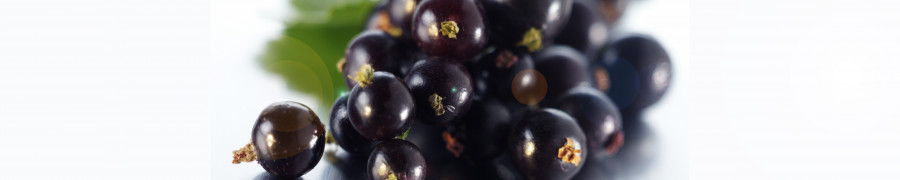 fruit-202