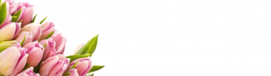 tulips-058