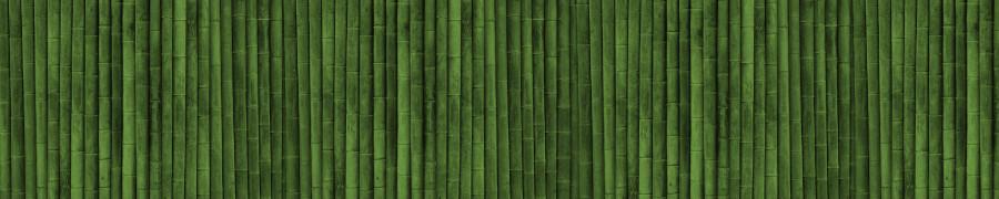bamboo-plants-130