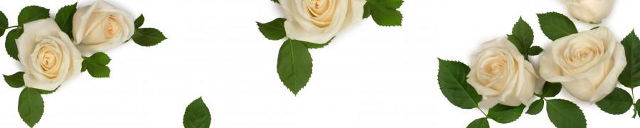 roses-009