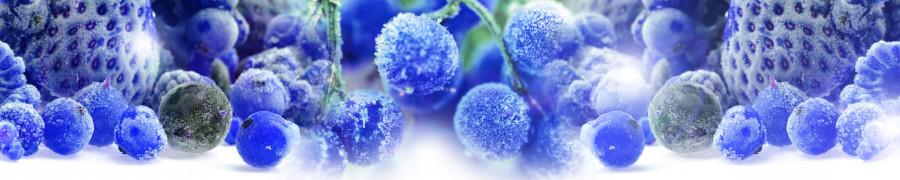 fruit-049