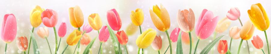 tulips-013