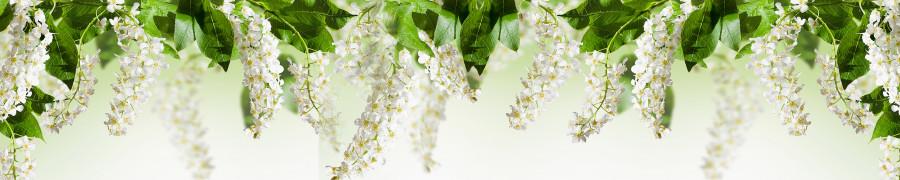 flowering-trees-076