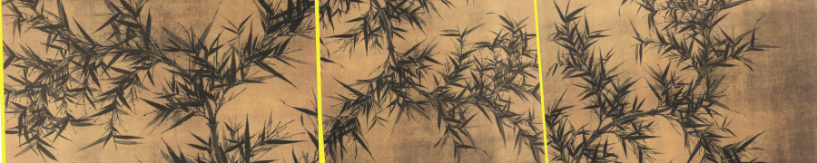 bamboo-plants-137