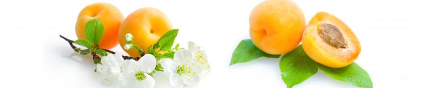 fruit-098