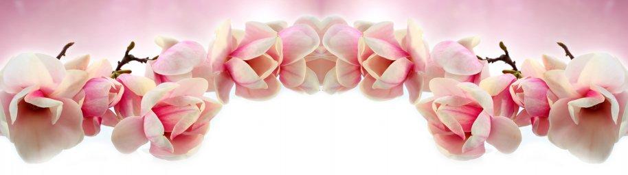 flowering-trees-039