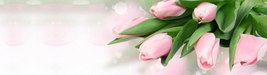 tulips-063