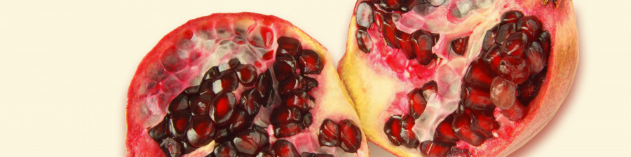 fruit-110