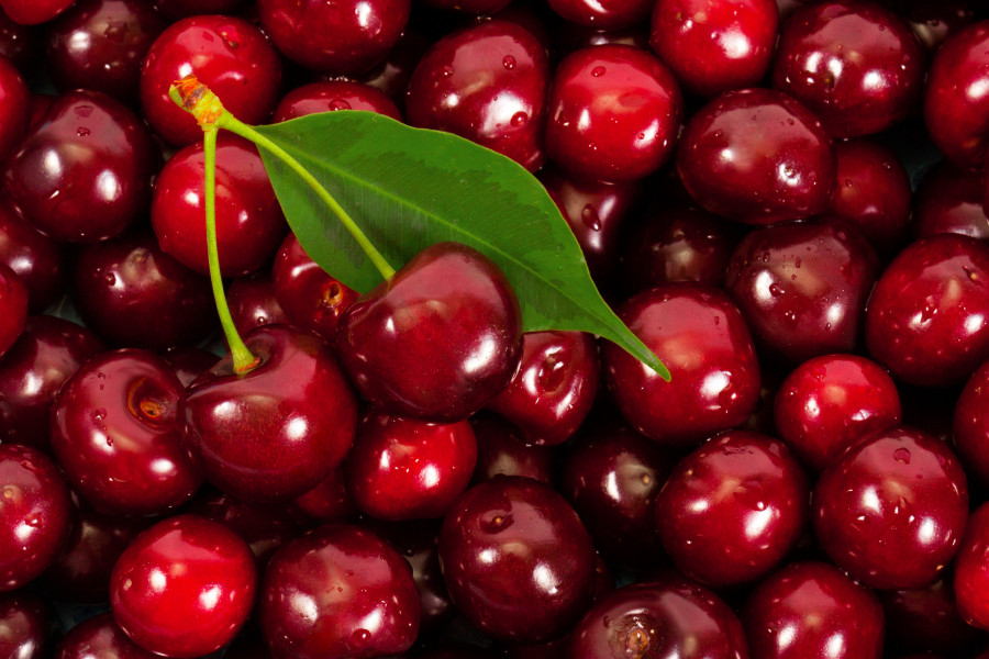 fruit-219