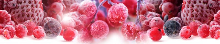 fruit-048