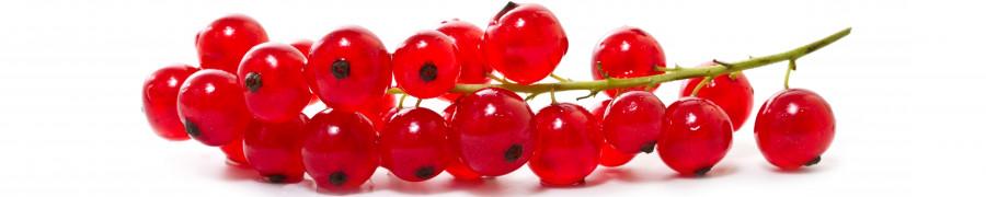 fruit-196
