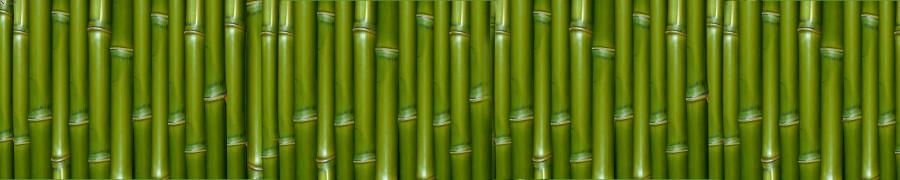 bamboo-plants-047