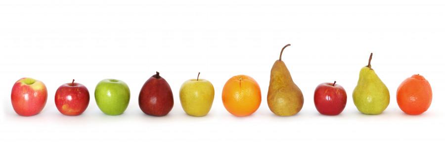 fruit-102
