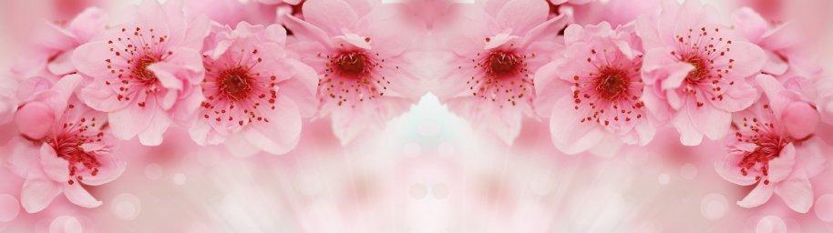 flowering-trees-009