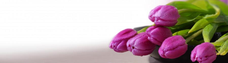 tulips-051