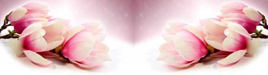 flowering-trees-031