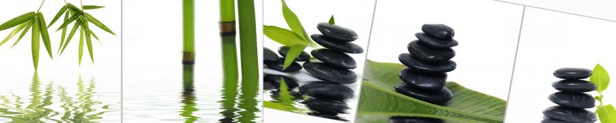 bamboo-plants-025