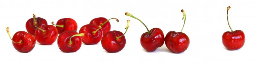 fruit-085